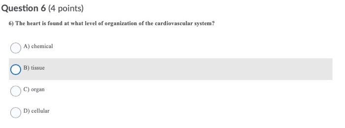 Question 6 (4 points) 6) The heart is found at what level of organization of the cardiovascular system? A) chemical O B) tiss