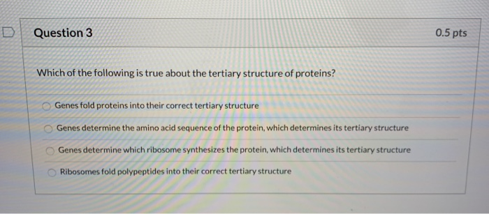 D Question 3 0.5 pts Which of the following is true about the tertiary structure of proteins? Genes fold proteins into their