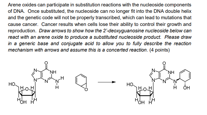 Arene oxides can participate in substitution reactions with the nucleoside components of DNA. Once substituted, the nucleosid