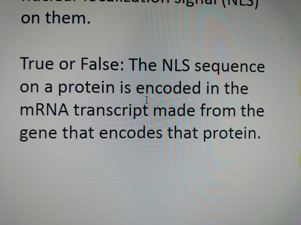 JIS UI (LJ) on them. True or False: The NLS sequence on a protein is encoded in the mRNA transcript made from the gene that e